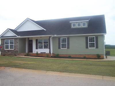 Greer Single Family Home For Sale: 158 Deyoung Meadows Drive