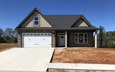 Spartanburg Single Family Home For Sale: 202 McCloud Court