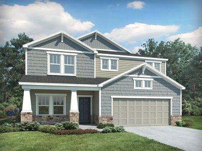 Simpsonville Single Family Home For Sale: 500 Jones Peak Drive