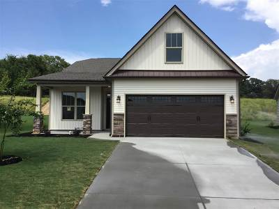 Moore Single Family Home For Sale: 513 Chantry Lane
