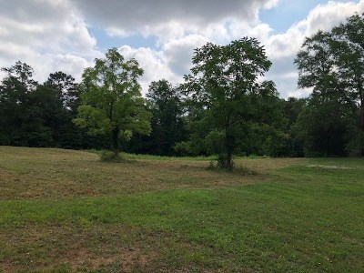 Chesnee Single Family Home For Sale: 815 Peach Shed Road