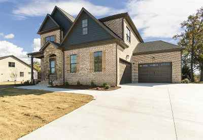 Greer Single Family Home For Sale: 136 Enclave Dr.