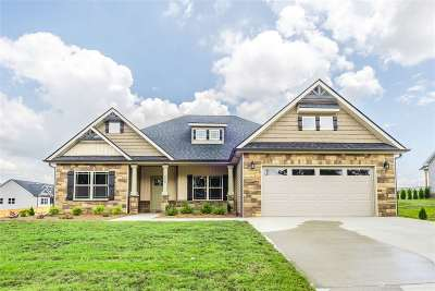 Chesnee Single Family Home For Sale: 1497 Casey Creek Road
