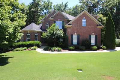 Spartanburg Single Family Home For Sale: 512 Verdae Drive