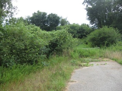 Inman Residential Lots & Land For Sale: U W Tillerson Drive