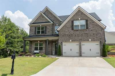 Greenville Single Family Home For Sale: 94 Park Vista Way