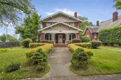 Greenville Single Family Home For Sale: 126 James Street