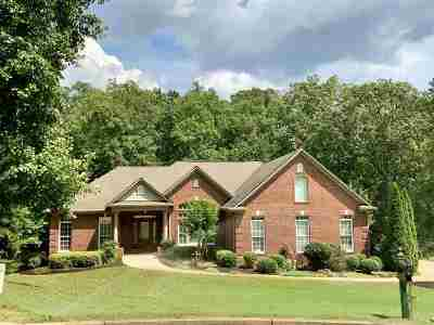 Spartanburg Single Family Home For Sale: 701 Mosswood Lane