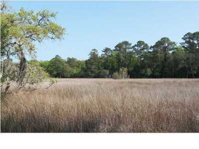 Edisto Island SC Residential Lots & Land For Sale: $92,490