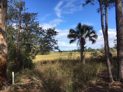 Edisto Island SC Residential Lots & Land For Sale: $74,900