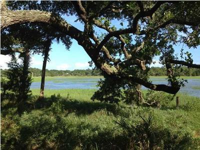 Kiawah Island Residential Lots & Land For Sale: 28 Rhetts Bluff Road