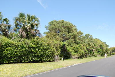 Seabrook Island Residential Lots & Land For Sale: 2262 Oyster Catcher Ct.