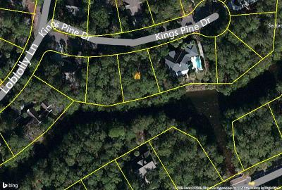 Charleston County Residential Lots & Land For Sale: 2119 Kings Pine Drive