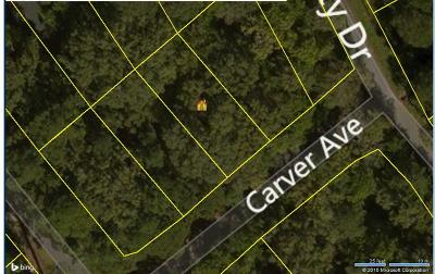 Residential Lots & Land Contingent: 8 Carver Avenue