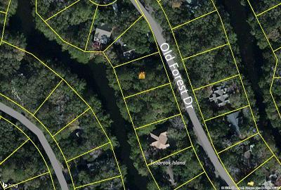 Seabrook Island Residential Lots & Land For Sale: 2729 Old Forest Drive