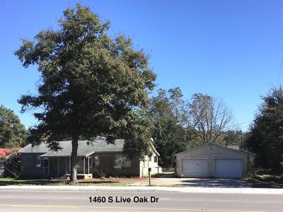 Single Family Home For Sale: 1462 S Live Oak Drive