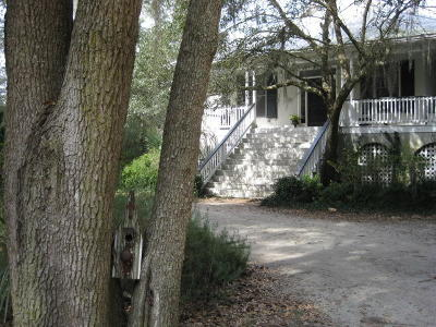 Edisto Island Single Family Home For Sale: 8449 Palmetto Pointe Lane