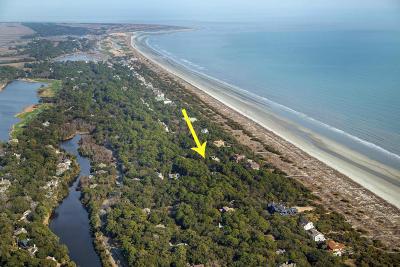 Kiawah Island Residential Lots & Land Contingent: 13 Royal Beach Drive