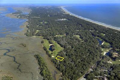 Kiawah Island Single Family Home For Sale: 543 Oyster Rake