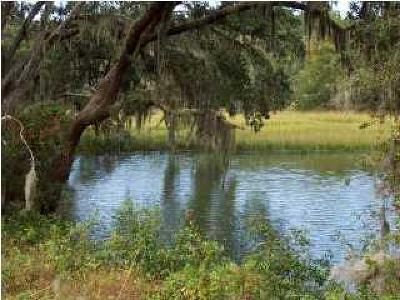 Johns Island Residential Lots & Land For Sale: Fenwick Plantation Road