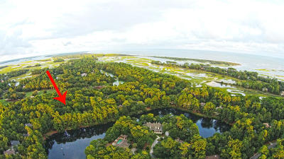 Seabrook Island Residential Lots & Land For Sale: 2877 Old Drake Drive