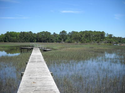 Johns Island Residential Lots & Land For Sale: 4056 Pine Creek Road