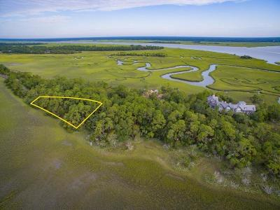 Kiawah Island Residential Lots & Land For Sale: 242 Eagle Point Road