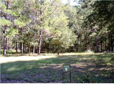 Residential Lots & Land For Sale: 3 Hopkinson Plantation Road