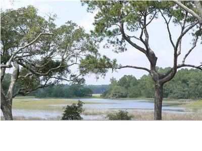 Johns Island Residential Lots & Land For Sale: 3326 Hopkinson Plantation Road