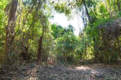 Edisto Island SC Residential Lots & Land For Sale: $120,000