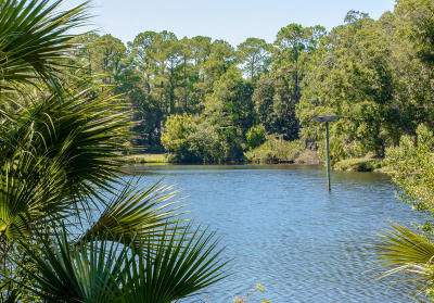 Seabrook Island Single Family Home For Sale: 2876 Old Drake Drive