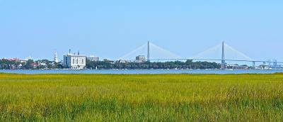 James Island Residential Lots & Land For Sale: Lot 6 White Point Blvd.