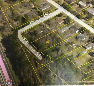 Residential Lots & Land For Sale: Minor Street