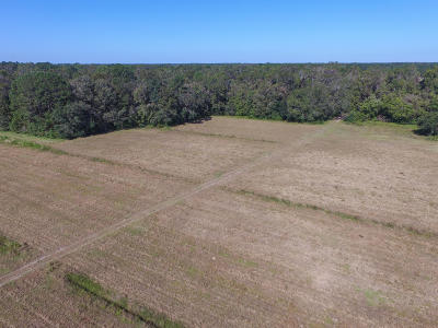 Johns Island Residential Lots & Land For Sale: 6 Breakaway Trail