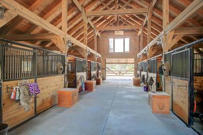 Mount Pleasant Single Family Home For Sale: 762 Bulls Bay Boulevard