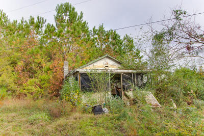 Wadmalaw Island Single Family Home Contingent: 6026 Maybank Highway