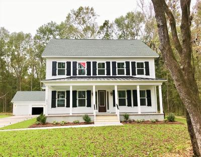 Johns Island Single Family Home For Sale: 2872 Claybrook Street