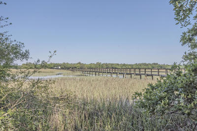 Johns Island Residential Lots & Land For Sale: 4214 Christine Drive