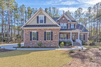 Summerville Single Family Home Contingent: 1023 Mount Whitney Drive