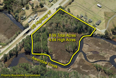 Awendaw Residential Lots & Land For Sale: 7250 N Highway 17
