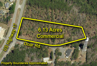 Awendaw Residential Lots & Land For Sale: 6445 N Highway 17
