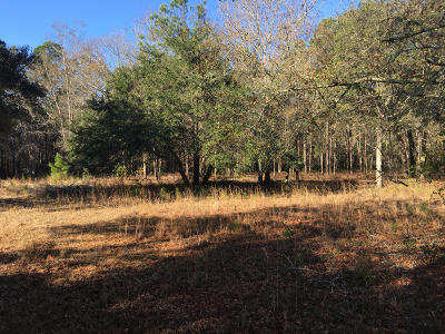 Residential Lots & Land For Sale: 2022 Zelasko Drive