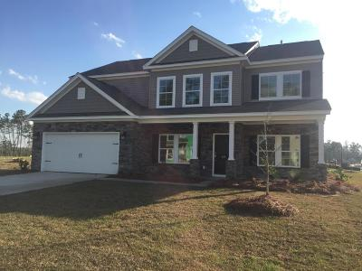 Goose Creek Single Family Home For Sale: 125 Firethorn Drive