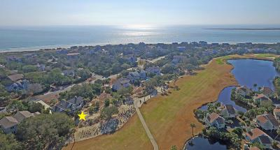 Seabrook Island Single Family Home For Sale: 3649 Seabrook Island Road