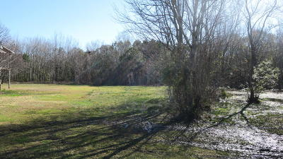 Residential Lots & Land For Sale: James Prioleau Road