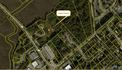 Charleston Residential Lots & Land Contingent: Tract A Ashley River Road