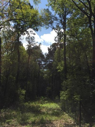 Wadmalaw Island Residential Lots & Land For Sale: 6303 Bears Bluff Road