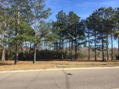 Residential Lots & Land For Sale: 1504 Eagle Landing Boulevard