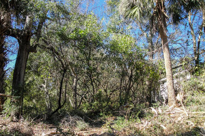 Edisto Beach SC Residential Lots & Land For Sale: $139,000