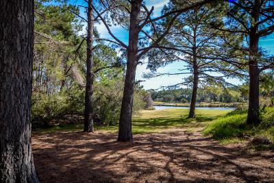 Kiawah Island Residential Lots & Land For Sale: 17 Lemoyne Lane